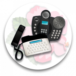 Provide a verity of specialized and assistive telephone equipment at no charge.